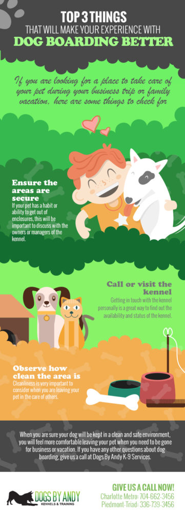 Top 3 Things That Will Make Your Experience with Dog Boarding Better