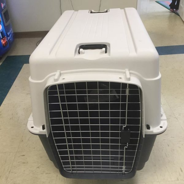 Kennels & Crates